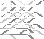 logo_kdfs